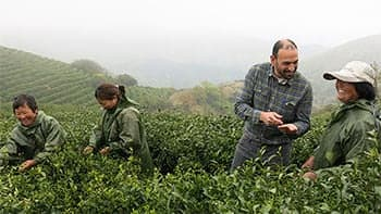 tea workers and buyer happily discussing tea leaves in a field of tea plants